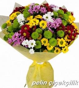 rengarek mevsim çiçekler