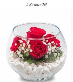 Fanusun içinde güller