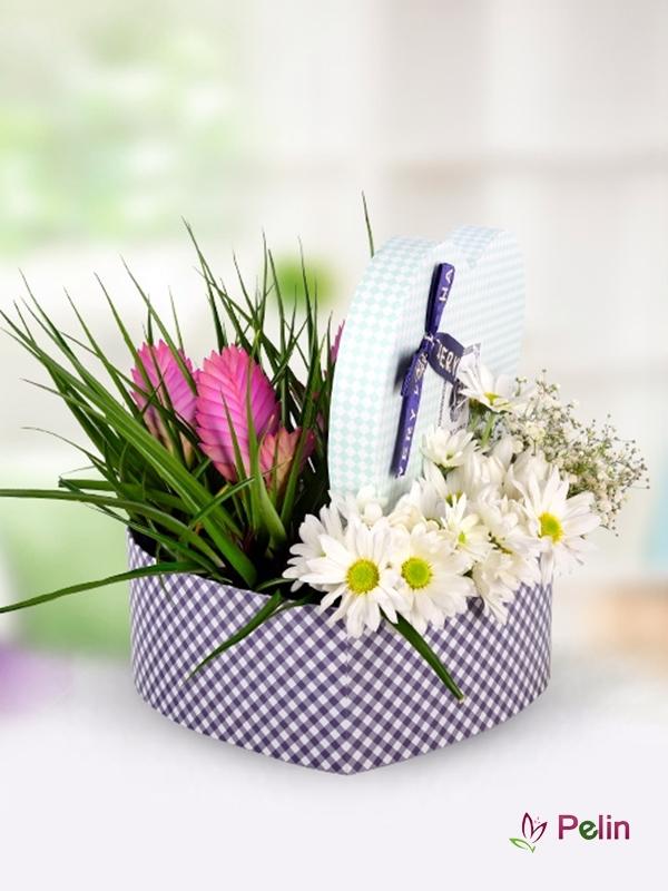Verezya Süs Bitkisi Ve Beyaz Kasımpatılar